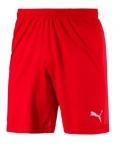 FINAL evoKNIT Shorts
